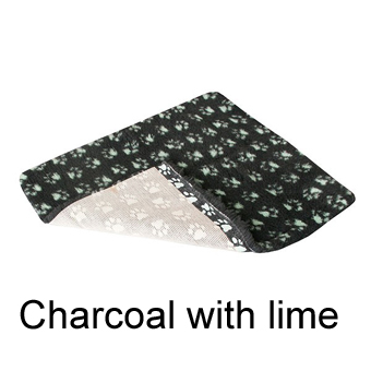 CHARCOAL WITH LIME PAWS