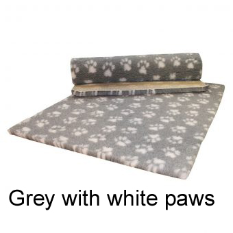 GREY-WITH-WHITE-PAWS-340×340 copy